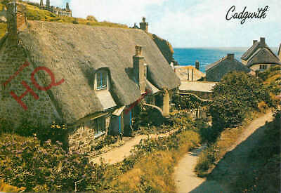 £3.49 • Buy Picture Postcard:;Cadgwith, The Lizard [Salmon]