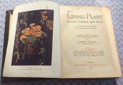 The Living Plant In Leaf Flower & Fruit Alfred Ernest Knight & Edward Step 1905 • 3£