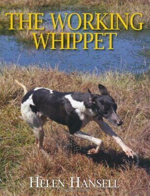 The Working Whippet By Helen Hansell Hardback Book The Cheap Fast Free Post • 27.99£