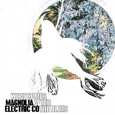 Magnolia Electric Co.-What Comes After The Blues CD NEW • 8.43£