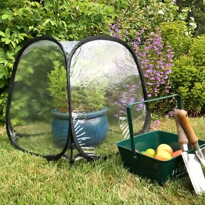 50cm Mini Pop Up Garden Plants Flowers Cover Tent PVC Greenhouse Cloche UK • 18.99£