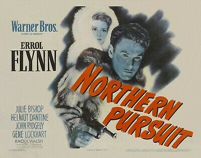 Northern Pursuit 1943 Espionage/adventure Errol Flynn Dvd • 3.50£