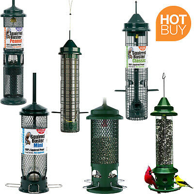 Hanging Squirrel Proof Bird Feeder Woodpecker Finch Tit Robin Sparrow Reed Nut • 109.62£