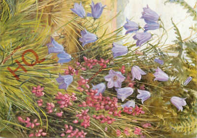 Picture Postcard:-Flowers, Harebells, Margaret Tarrant [Medici Society] • 3.49£