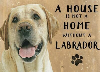 £7.85 • Buy 20cm Metal Golden Labrador 'A House Is Not A Home' Hanging Sign Dog Lover Gift