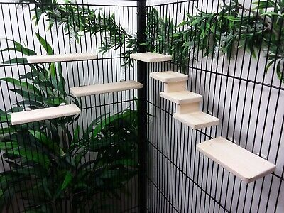 £21 • Buy Pack Of 8.2cm Deep Shelves (5) & Steps/stairs Hamster, Gerbil, Mouse Cage
