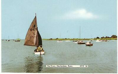 Maylandsea, Essex - River, Boat - Frith Postcard C.1960s • 1.75£
