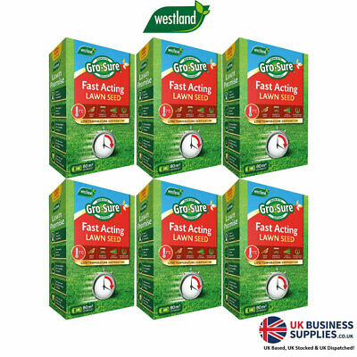 £23.99 • Buy Westland Gro-Sure Fast Acting Gardening Grass Lawn Seed 80m2 2.4kg