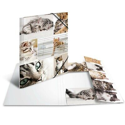 £16.99 • Buy HERMA Elastic Folder Animals With Cats Motif, A4, Sturdy Cardboard, With Inne...