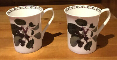2 Mugs  - Queens - The Royal Horticultural Society - Hookers Fruit • 6£