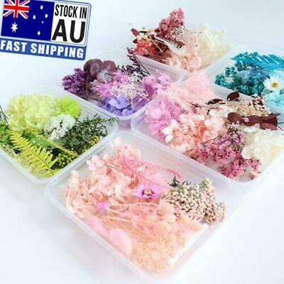 AU5.01 • Buy Assroetd Real Dried Flowers Pressed Leaves For Epoxys Resins Jewelry Making