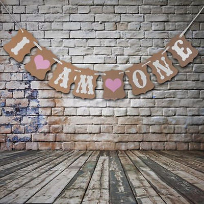AU7.90 • Buy Vintage 1st Birthday Party Bunting Banner Baby Girl Pink Decoration I Am OnE Uu