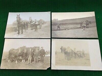 Horses Heavy Working Farm Machinery Social History 15 Postcards • 11.61£