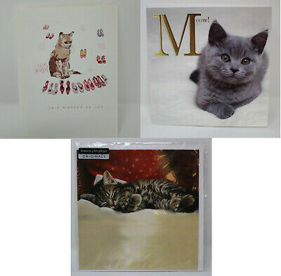 Greeting Card Pack Blank Cat Get Well Easter Lean On Me Thinking Of You New Home • 2.99£