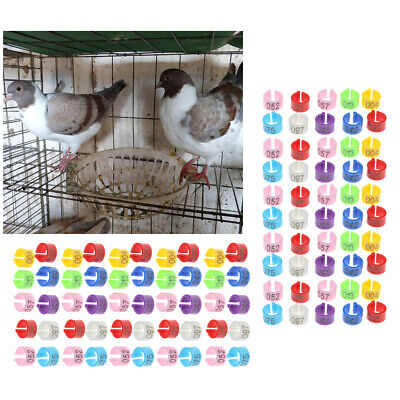 £4.99 • Buy 100Pcs Bird Rings Leg Bands For Pigeon Parrot Finch Canary Hatch Poultry Rings