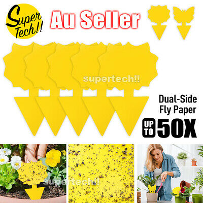 AU15.95 • Buy Upto50x Dual Sided Strong Sticky Trap Insect Killer Fruit Fly Whitefly Trap Gnat