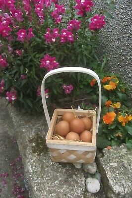 £2.99 • Buy Beautiful Square Wicker Egg Basket With High Handles Ideal Craft/flowers-used Vg