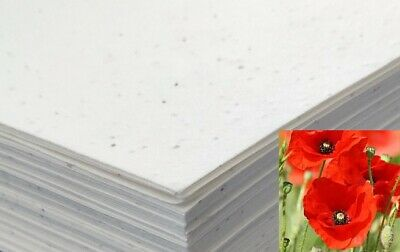 £10.99 • Buy Seeded Craft Paper 10 Sheets A4 Size Poppy Seeds 200GSM Cardmaking Plantable ECO