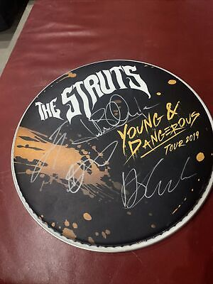 THE STRUTS  Young & Dangerous Drum Head Signed Drumhead By Al The Band • 104.14£