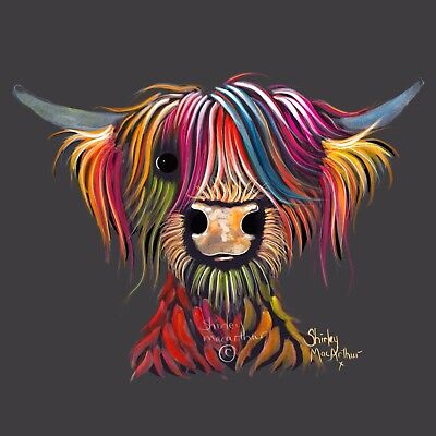 £7.99 • Buy HIGHLAND CoW PRiNTS WaLL ART Of Original Painting 'OLiVeR ON G SHIRLEY MACARTHUR