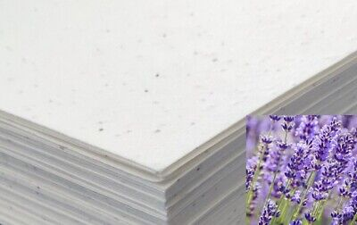 £10.99 • Buy Seeded Craft Paper 10 Sheets A4 Size Lavender Seeds 200GSM Cardmaking Plantable