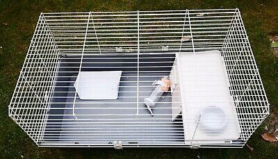 £20 • Buy Rabbit And Guinea Pig Cage