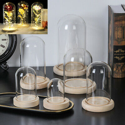 £6.32 • Buy Glass Display Bell Jar Dome Cloche With Base Decor Desk Vintage Stand Cover