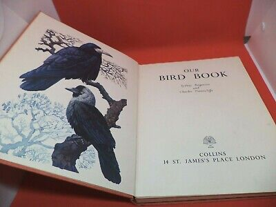 £22.99 • Buy OUR BIRD BOOK Old Vintage ART PRINTS Book ROGERSON & TUNNICLIFFE British Wild