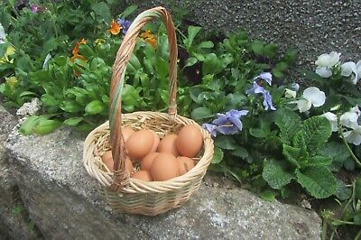 £3.99 • Buy Beautiful  Round Wicker Egg Basket High Handle - Ideal Craft Work - Used Vgc