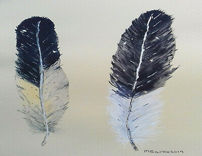 $29.35 • Buy Original Watercolour Of Two Black And White Magpie Feathers. Bird Paintings.