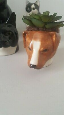 £10 • Buy Jack Russell Face Egg Cup By Quail Ceramics Lovely