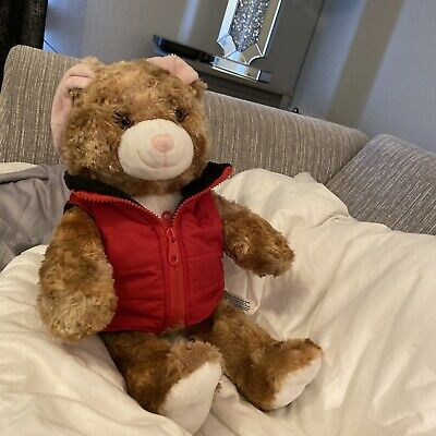 £5 • Buy BUILD A BEAR, RABBIT, 17 Ins Tall, With Jacket