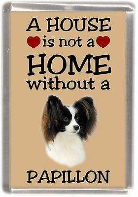 £3.10 • Buy Papillon Butterfly Dog Fridge Magnet  A HOUSE IS NOT A HOME  By Starprint
