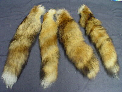 $17 • Buy GENUINE RED FOX TAIL On Key Chain 17 -19  Longer Size Fly Tying Pow Wow NATURAL