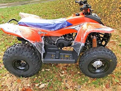 Childrens Smc Hornet 100 Auto Intermediate Level Kids Quadbike 10 Yr Old & Up! • 1,799£