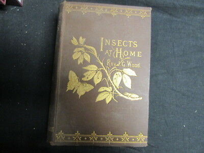 £88.59 • Buy Insects At Home, Rev. J. G. Wood, 1883, Longmans, , Accept