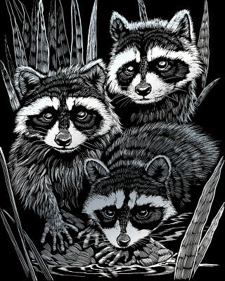 Raccoons Family A4 Silver Scraper Foil Engraving Art Craft Kit & Tool Silf46 • 4.45£
