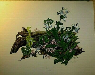 $ CDN33.46 • Buy Signed  Bluebells  Lithograph By Maryrose Wampler With COA