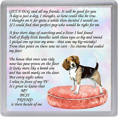 Beagle Dog Coaster  MY BEST FRIEND Poem ......  Novelty Gift By Starprint • 3.75£