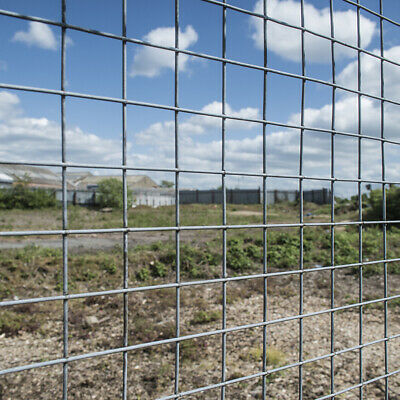Welded Wire Fence Mesh 1 X1  Galvanised Fencing Garden Aviary Chicken Run Protec • 19.95£