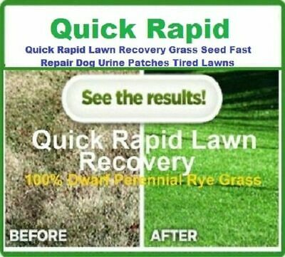 £8.99 • Buy Quick Rapid Lawn Recovery Grass Seed Fast Repair Dog Urine Patch IVISONS Lawns