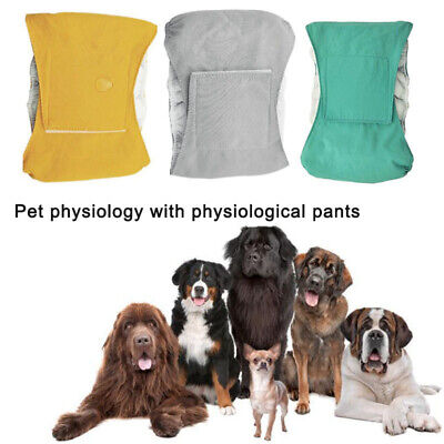 Male Pet Dog Nappy Pants Reusable Simple Menstrual Sanitary Diaper Pets Supply • 6.67£