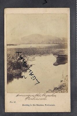 Original Old Cdv Of Evening In The Marshes, Portinscale, Keswick, Cumbria. • 2.50£
