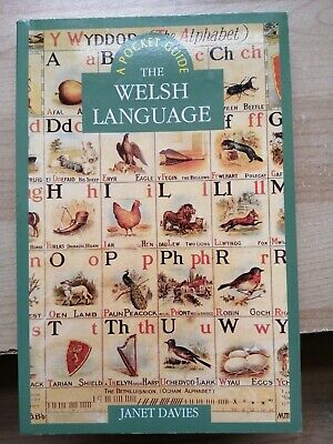 The Welsh Language: A History By Janet Davies (Paperback, 2005) • 6£