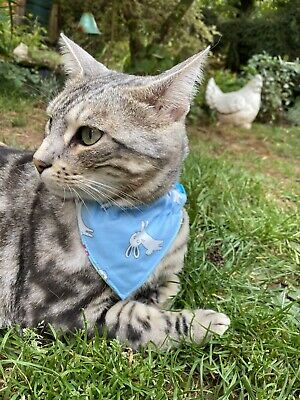 £4.99 • Buy Cat Collar With Reversible Bandana/neckerchief, Hand Made By Pets Ark