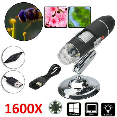 1600X USB Digital LED Magnifier Microscope Endoscope Camera For Tablet Laptop • 9.99£