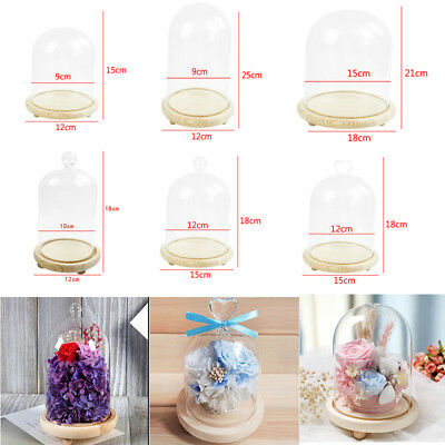 £14.95 • Buy Small/Large Glass Display Bell Dome Cloche With Base Gift Jar Centerpiece Stands