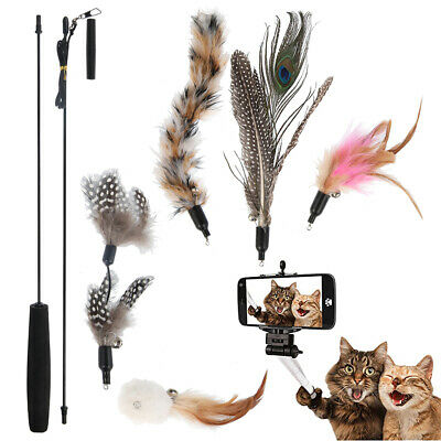 AU13.44 • Buy Cat Play Toy Feather Teaser Wand Interactive Stick Kitten Pet Fun Fish Cat Toys