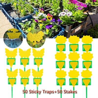 AU22.99 • Buy 50 Sticky Trap Fruit Fly Gnat Trap Yellow Sticky Bug Trap For Indoor Outdoor