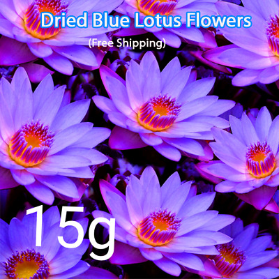 $ CDN3.79 • Buy Ceylon Blue Lotus Flower Nymphaea Caerulea Dried Flower Herbal Tea 15g